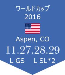 WC Aspen報告